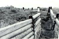 Береговые укрепления Дудинки. 1980
